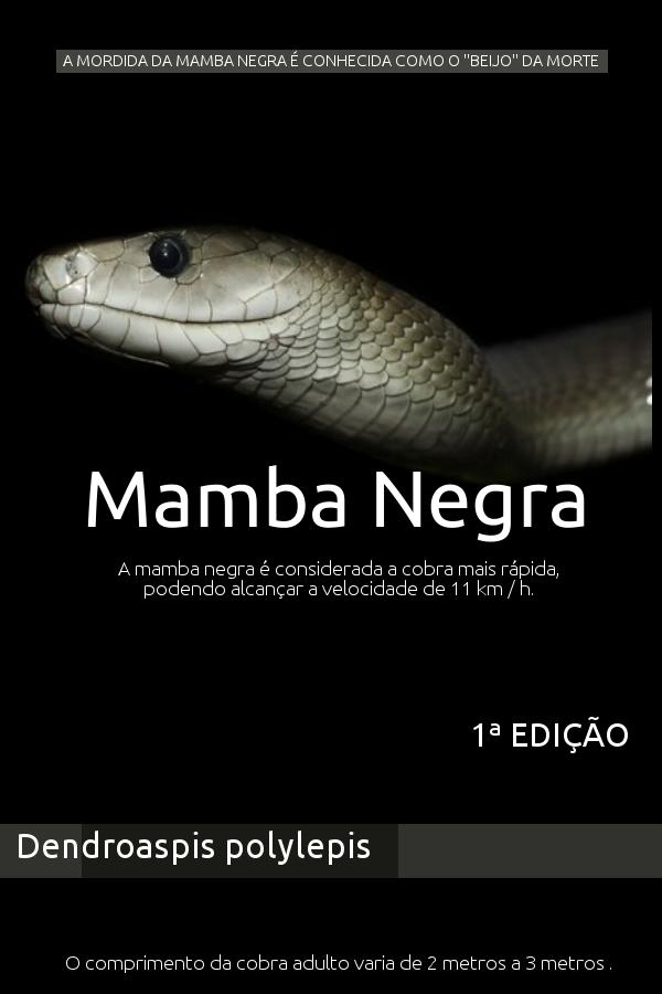 E BOOK Mamba Negra 1ª Edição