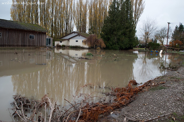nooksack flood