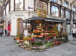 Stephansplatz Street Florist