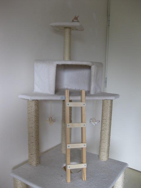 itse tehty raapimapuu