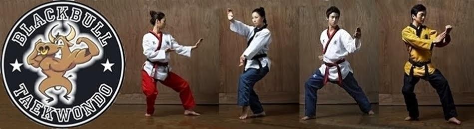Blackbull Taekwondo Team Academy