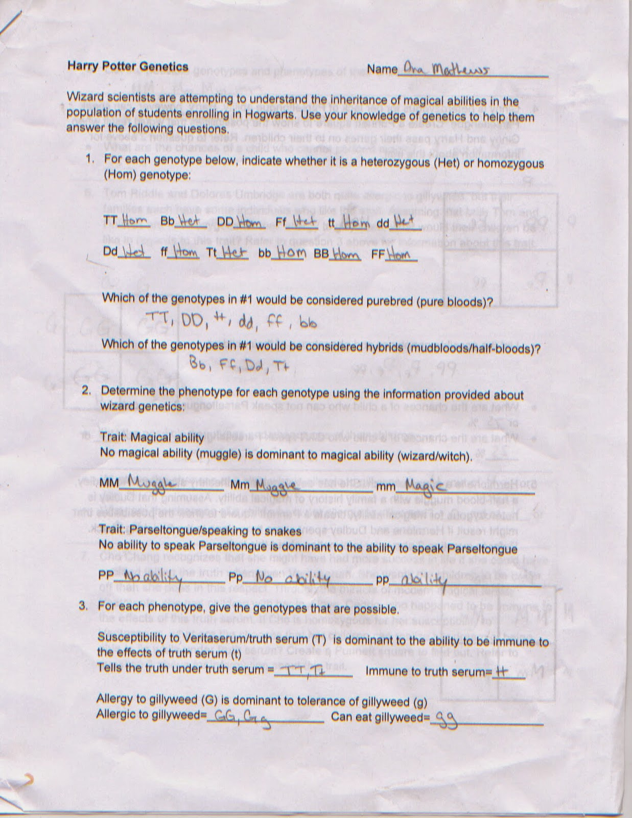 Harry Potter Worksheets English Ks1 together with  likewise 26 Hary Poter Ge ics Workshet Answers  Harry Potter Ge ics  Free further Bio3 0910 Lec6 Ge ics Starter in addition  also  moreover Harry Potter Ge ics Lesson 1 by Next Generation Science Clroom together with Ge ics Worksheet Answers   Winonarasheed further  additionally Bio3 0910 Lec6 Ge ics Starter furthermore Harry Potter Worksheets Worksheets Harry Potter And The Philosophers as well KS2   Harry Potter series by J K  Rowling   Teachit Primary in addition Ge ics in Harry Potter's World Lesson 1   ppt download additionally Introduction to Ge ics Worksheet Elegant Chapter 11 Introduction besides Biology  It Grows On You  Harry Potter Ge ics as well . on harry potter genetics worksheet answers