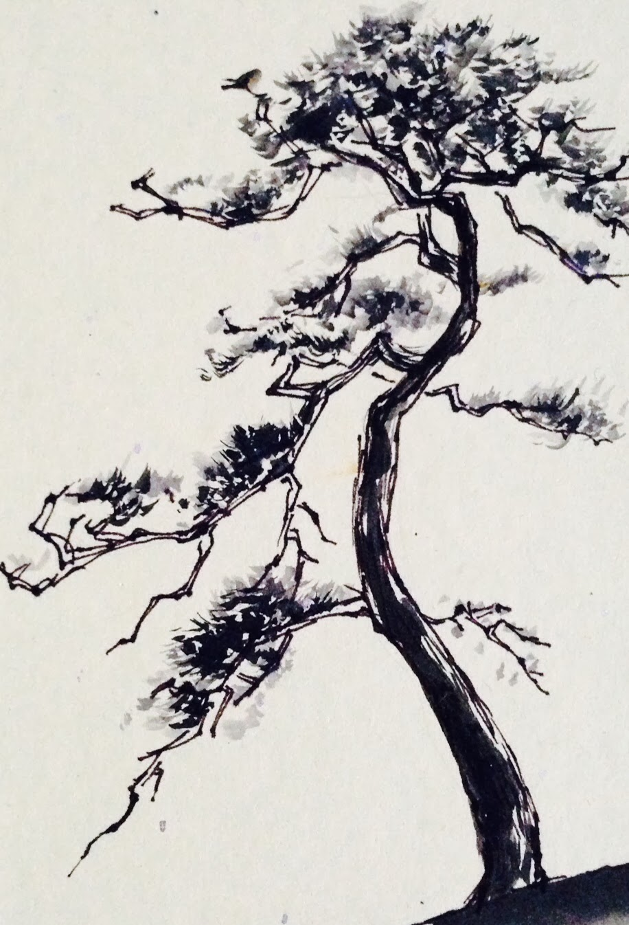 art of asian ink painting pine tree sumi painting