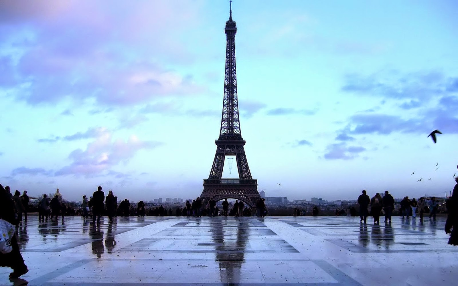 Eiffel Tower Amazing Evening Wallpapers Eiffel Tower Latest Hd