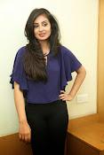 Bhanu sri mehra sizzling photos-thumbnail-12