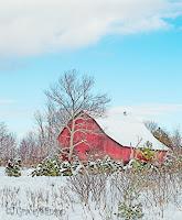 Winter barn watercolour, Orillia, Ont