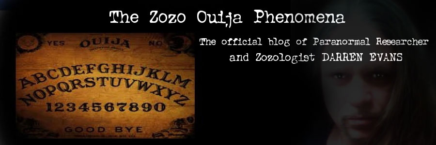Zozo appears to cause psychological problems  poltergeist activity    Zozo Demon Ouija Board