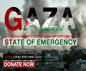 http://oneummah.org.uk/appeals/gaza-palestine-emergency-relief/