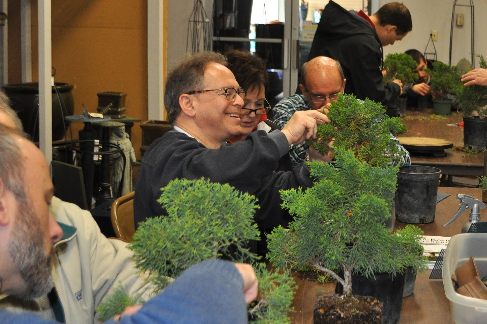 Nebraska Bonsai Society March 2013