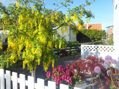 Malin sin kvardag: Inspirasjon til hagen!