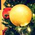 4on4: Natal