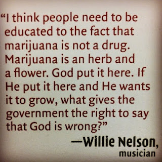 tumblr lvft7dJxx21qdbh6bo1 500 The Truth About Cannabis