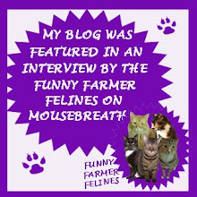 CHECK OUT OUR INTERVIEW ON MOUSEBREATH!