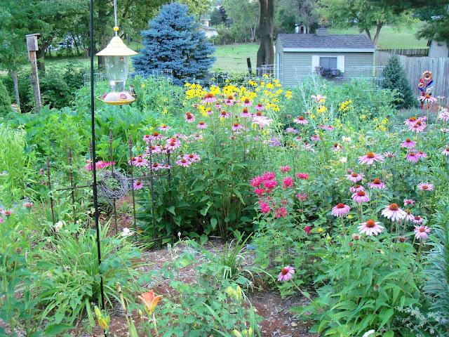 Beyond The Garden Gate The Garden Rooms At Sunsplash Gardens