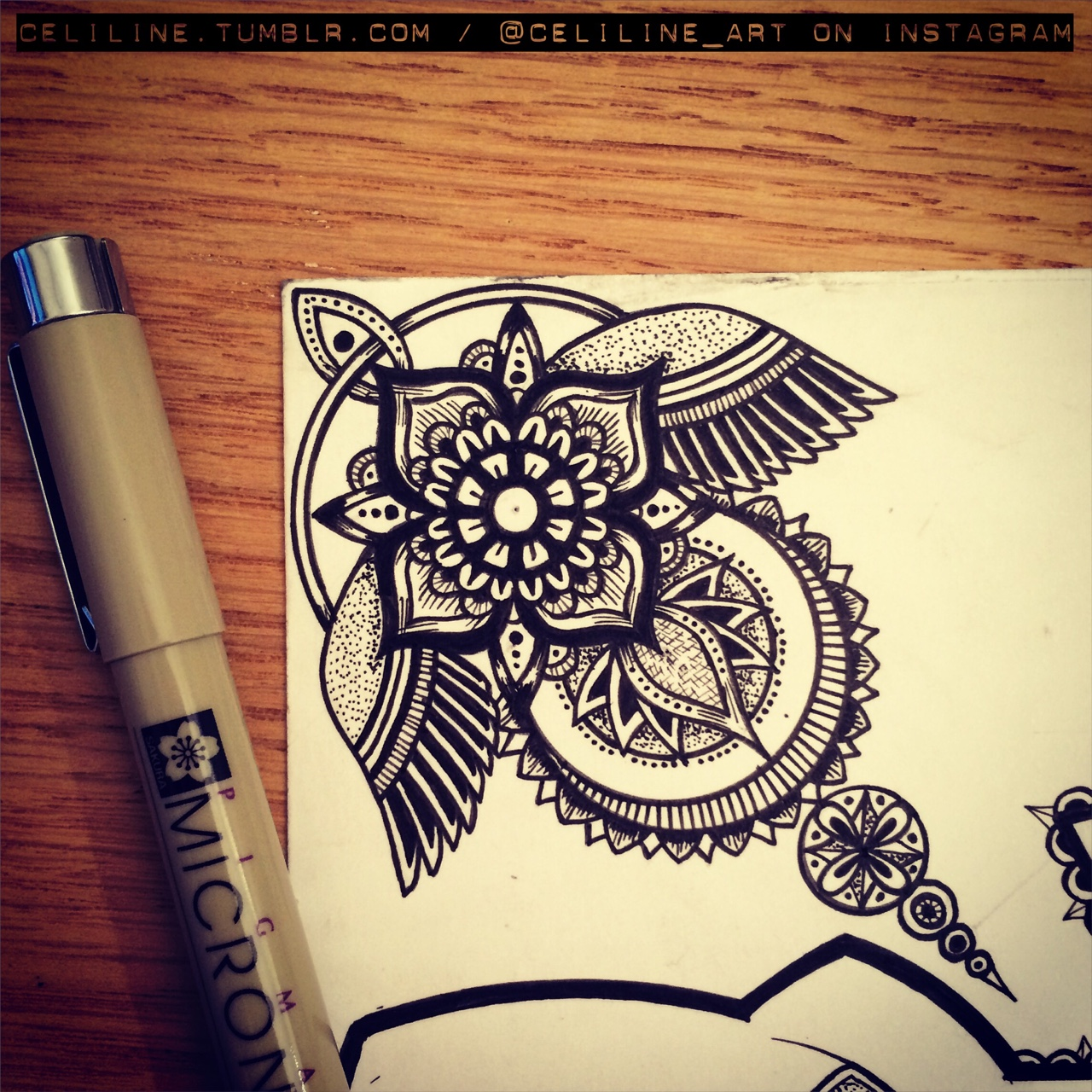 11-Celiline-Hand-Drawn-Zentangle-Doodles-Illustrations-Drawings-www-designstack-co