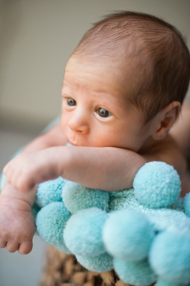 Newborn and Family Photography Session