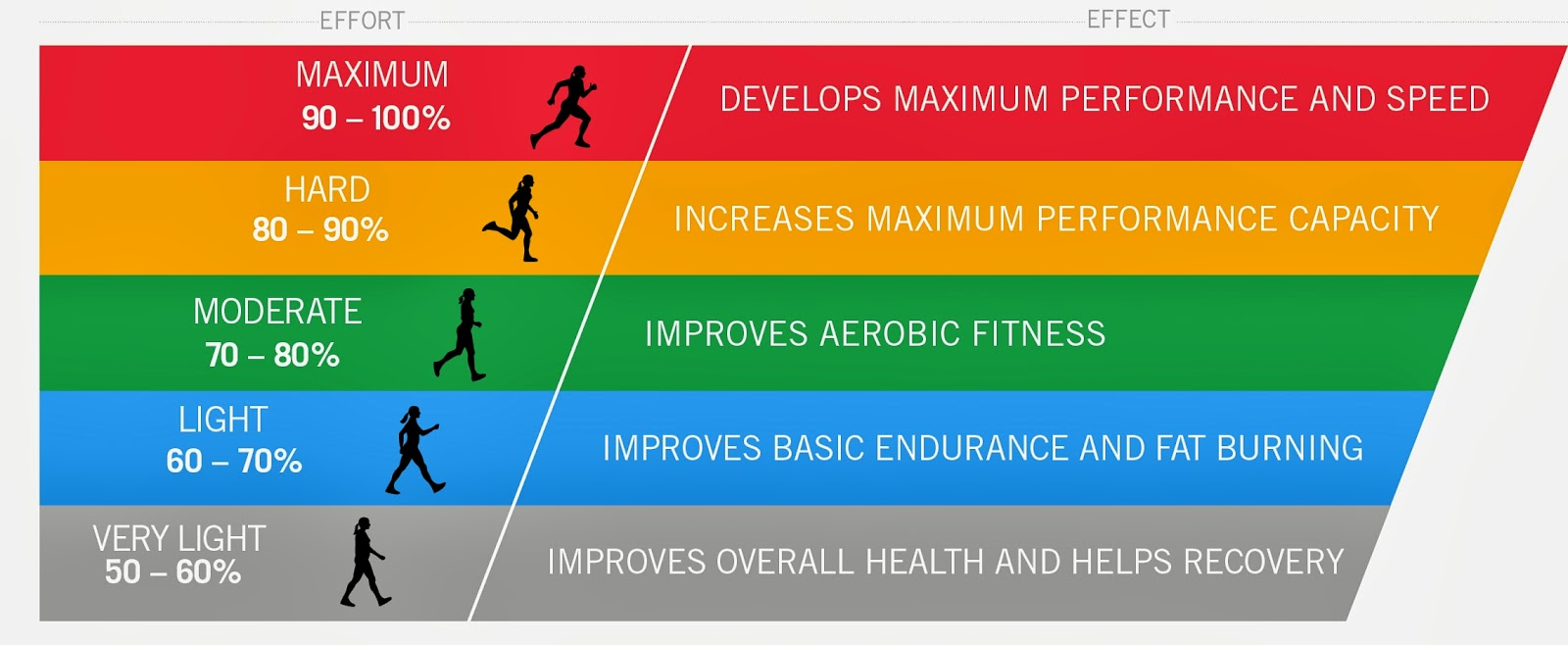 fitness and its components Fitness focus components of health related fitness there are five areas of health related fitness  they are heart and lung endurance or cardiovascular endurance, muscular strength, muscular endurance.