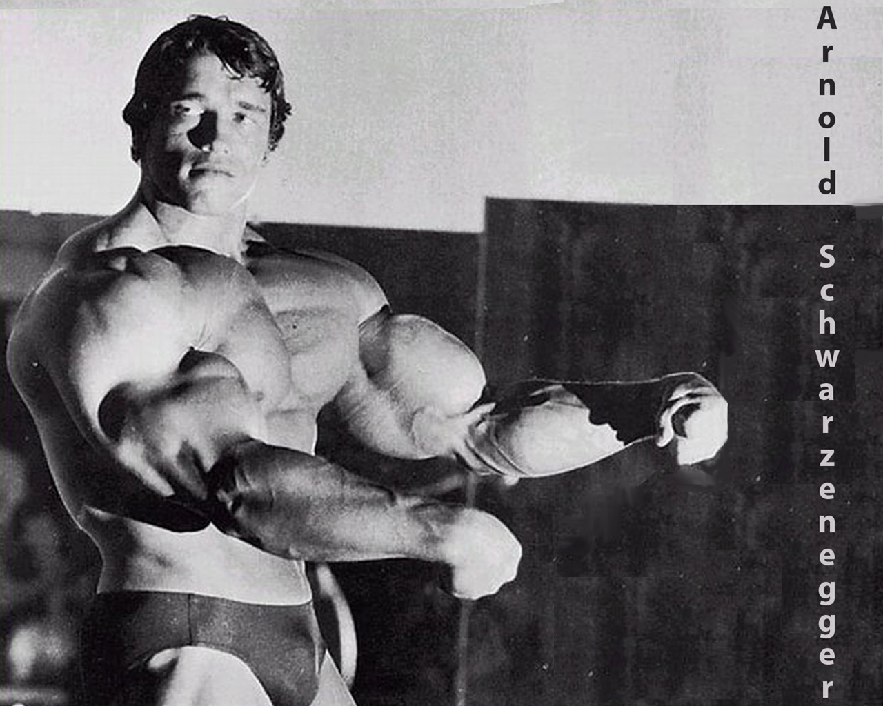 Arnold Schwarzenegger Bodybuilding Wallpapers 2
