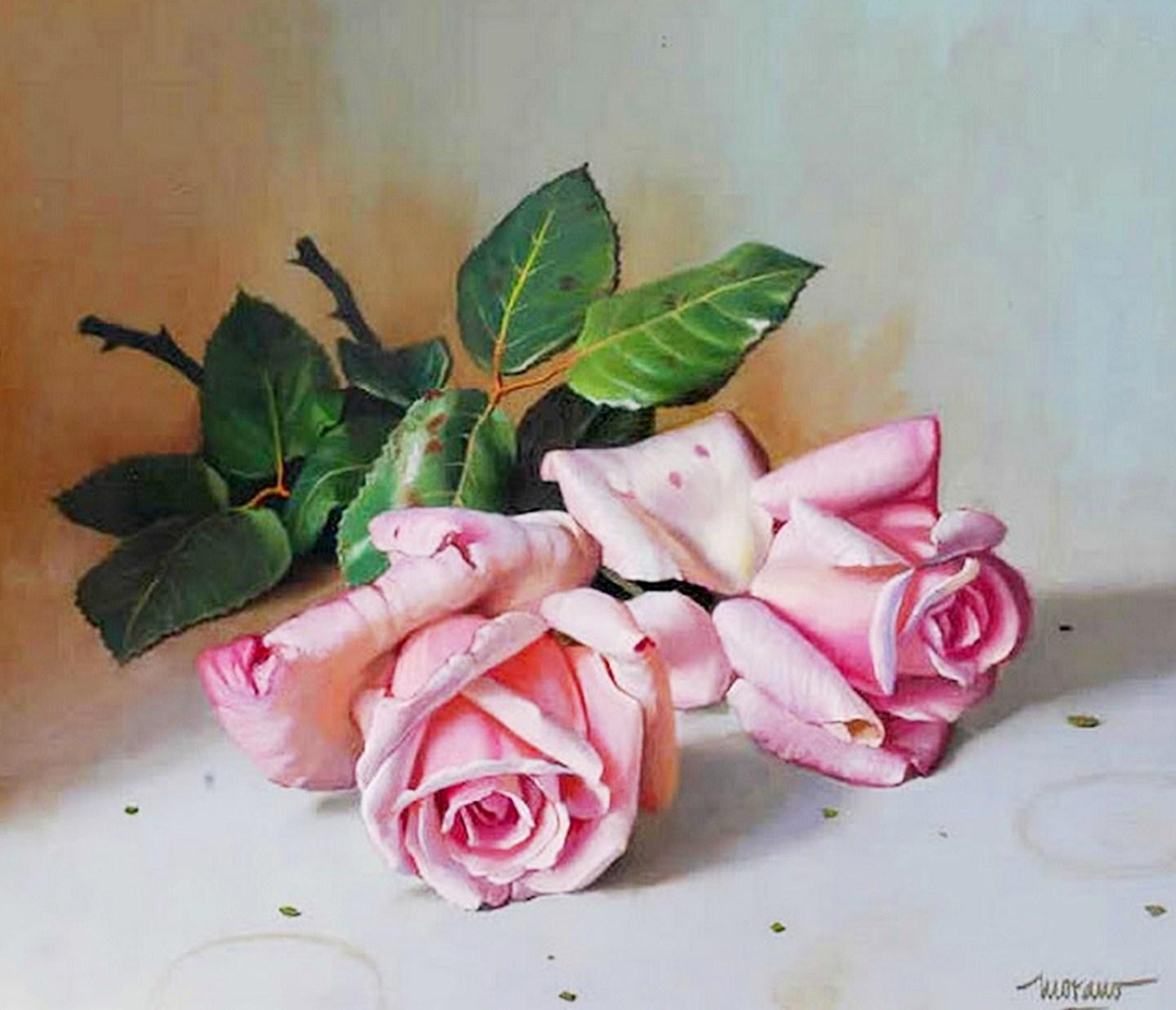 Pinturas cuadros bodegones modernos pinturas de flores - Cuadros de pintura ...