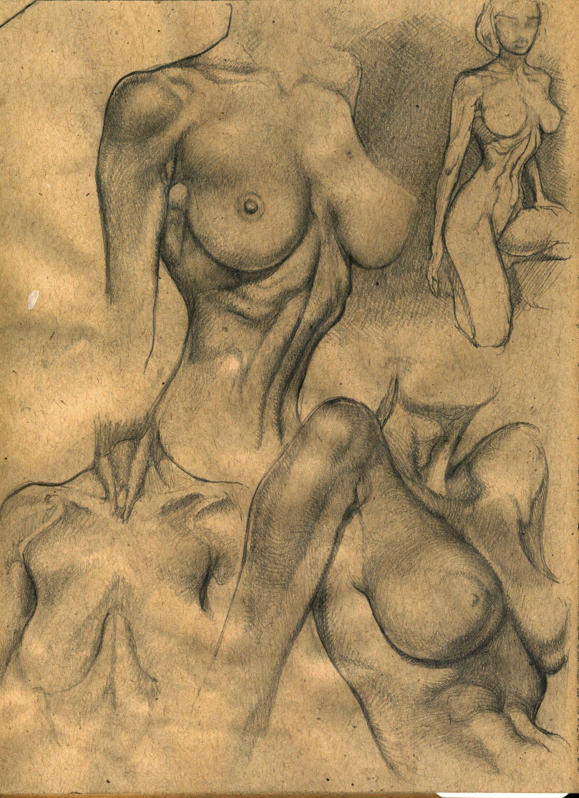 Artist Proof Studio: Komoda Anatomy Studies - Lost Sketchbook pages ...