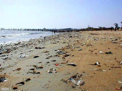 ورود سالانه 678 ميليون مترمکعب آلودگي به درياي خزر