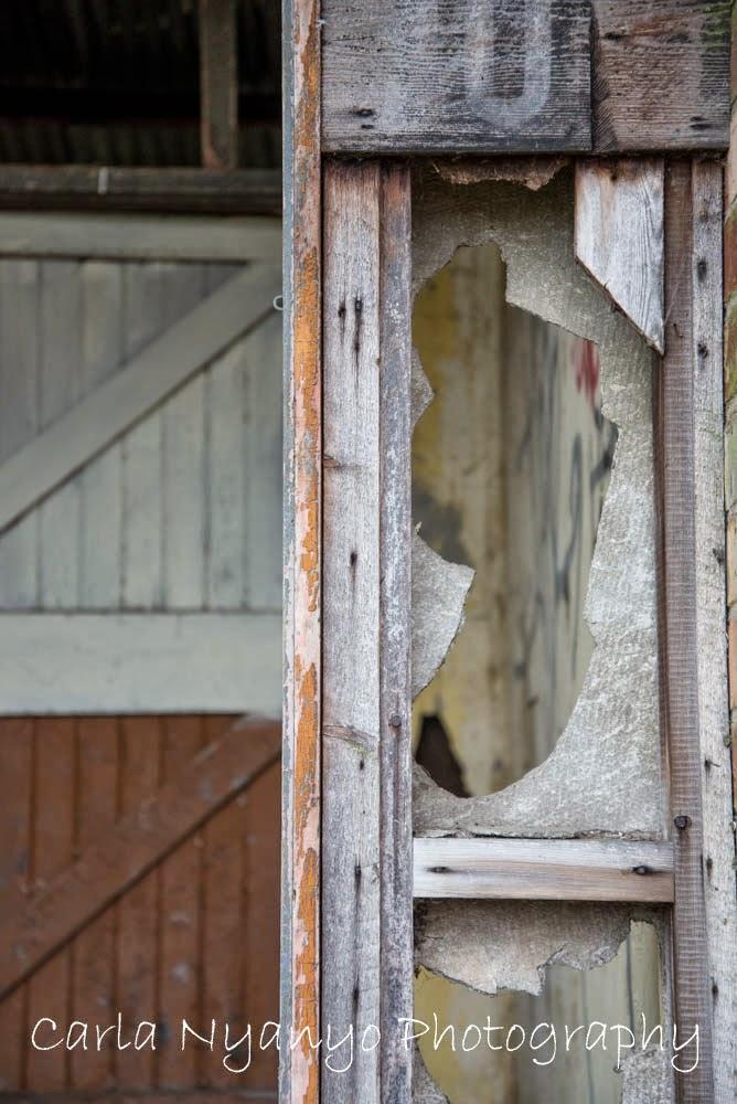 abandoned house 5