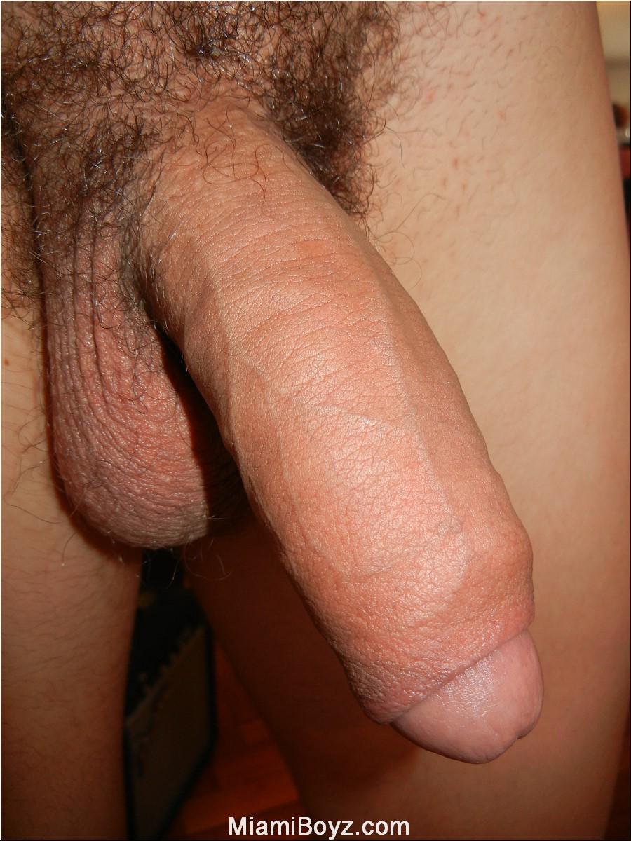 Фото мужских половых органов 19 фотография