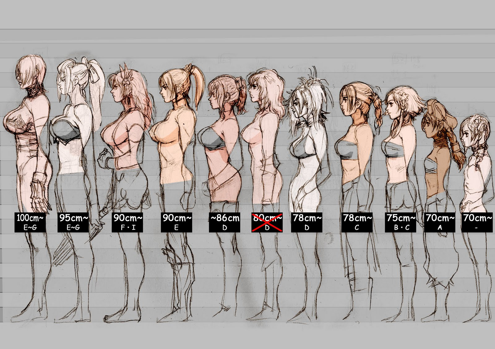 Breast Sizes Chart This Breast Size Regulator