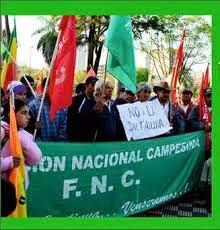 FEDERACION NACIONAL CAMPESINA