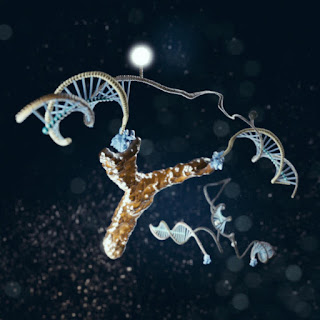 DNA Nanomachines Used For Rapid, Low-Cost Diagnosis