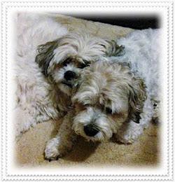 Madde and Bella