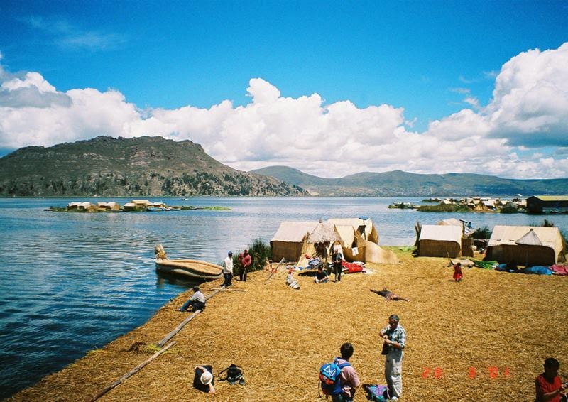 The totora reed is plentiful along the edges of lake Titicaca. The Uru people use them to make their homes, their furniture, their boats, and the islands they live on. Its dense roots support the top layer, which rots and must be replaced regularly by stacking more reeds on top of the layer beneath.