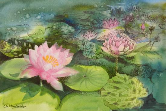 Pink Lotus Flowers by Chitra Vaidya (part of her portfolio on www.indiaart.com)
