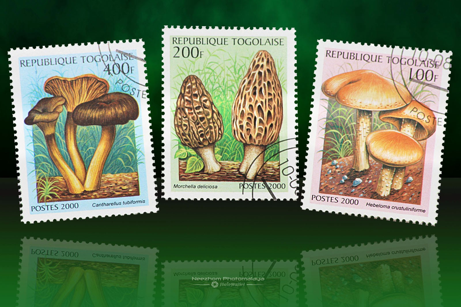 Togolese Republic mushrooms stamps 2000
