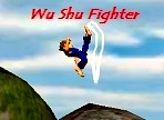 wu shu fighter