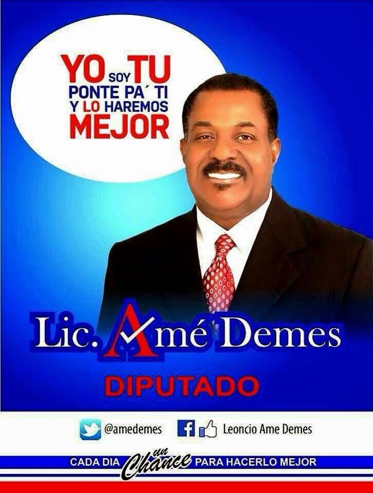 Amé Demes, diputado