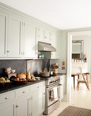 kitchen cabinets with hinges exposed