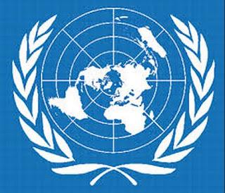 Struktur Organisasi, Peran dan Fungsi Perserikatan Bangsa-Bangsa (PBB)