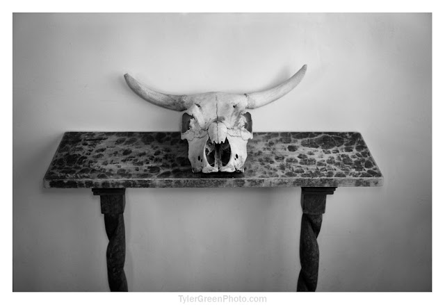 Ghost Ranch cow skull on table