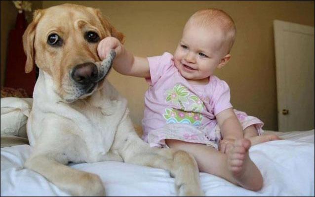 صورة مضحكة طفل بيلعب مع كلبه