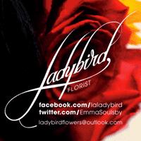 Ad: Ladybird Florists
