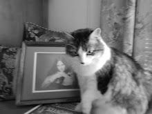 ~Pretty Kitty~