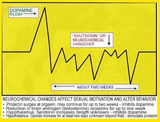 Как повысить тестостерон у мужчин естественными способами?