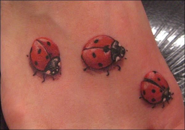 Ladybug Tattoos Ladybug Tattoos 33 Ladybug Tattoos 34 Ladybug Tattoos
