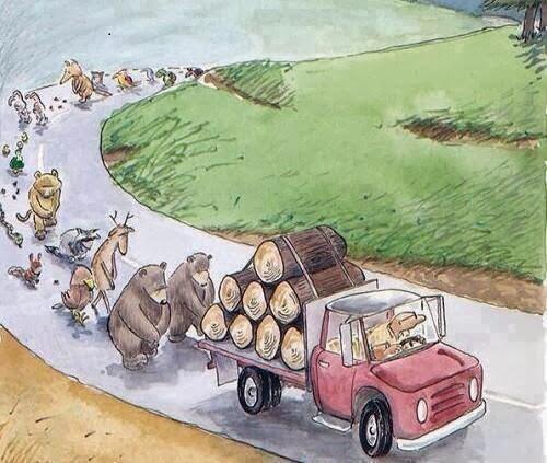 ' Cuando se corta un árbol, se corta la vida misma '