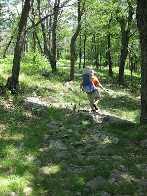 Mount Tammany blue dot trail