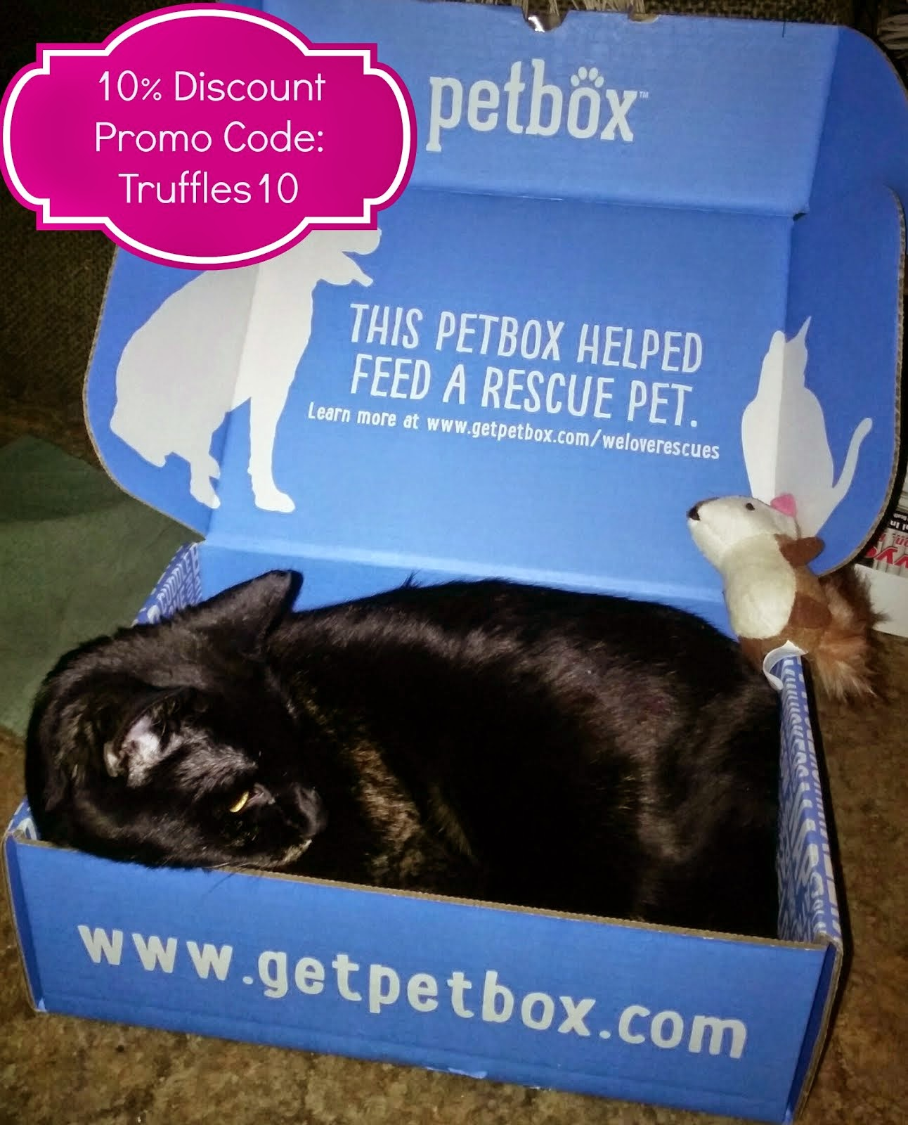 PetBox Brand Ambassador