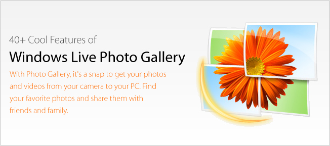 Download Windows Live Photo Gallery For Latest Version By Saftain Azmat
