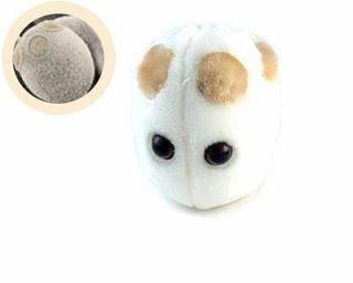 Ketika Bakteri, Virus Dan Mikroba Disulap Menjadi Boneka [ www.BlogApaAja.com ]