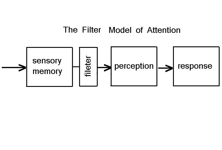 motivation and broadbent s filter model of attention Broadbent's filter model many researchers have investigated how selection occurs and what happens to ignored information donald broadbent was one of the first to try to characterize the selection process.
